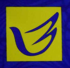 湖北佰信装饰设计工程有限公司